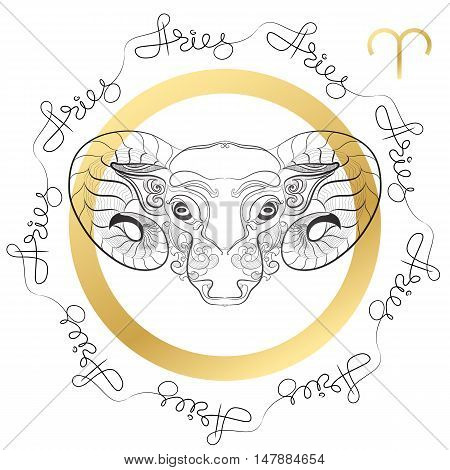 Hand drawn line art of decorative zodiac sign Aries on white background. Horoscope vintage card in zentangle style with words.