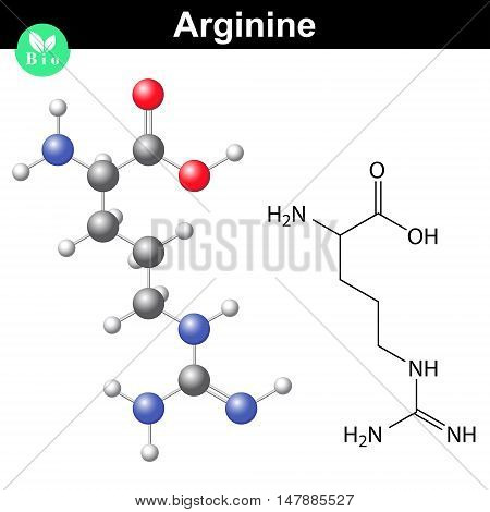 Arginine proteinogenic amino acid - chemical formula and model 2d and 3d illustration vector on white background eps 8