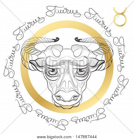 Hand drawn line art of decorative zodiac sign Taurus on white background. Horoscope vintage card in zentangle style with words.
