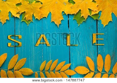 Autumn beautiful background for advertisement, discounts, sales