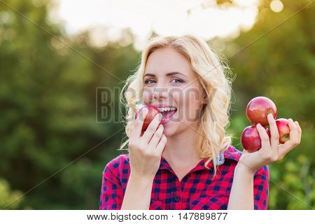 Beautiful young woman in checked red shirt harvesting apples, eating them
