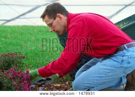 A Man Is Working In The Landscaping Garden