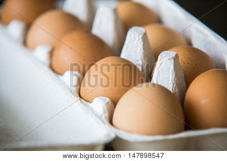 close up on Chicken Eggs packed in a box.