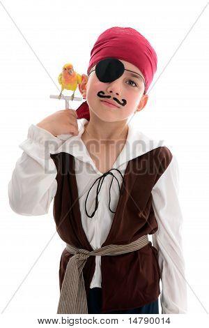 Pirate With Pet Bird