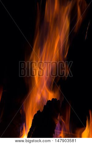 Beautiful orange fire flames on black background