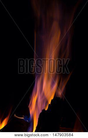 Orange violet fire flames on black background
