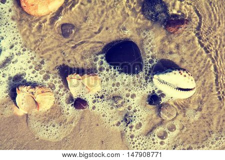 The Shells And Stones On The Seashore