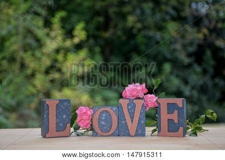 Blocks with Love lettering with pink rose against green nature background