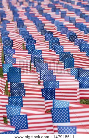United States flags lined up near the coast to commemorate the 9-11 event