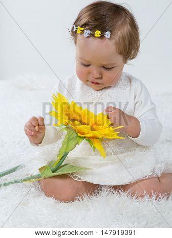 Little girl is considering a flower sunflower