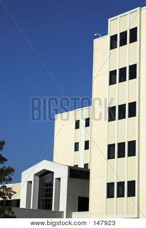 Hospital Building 1
