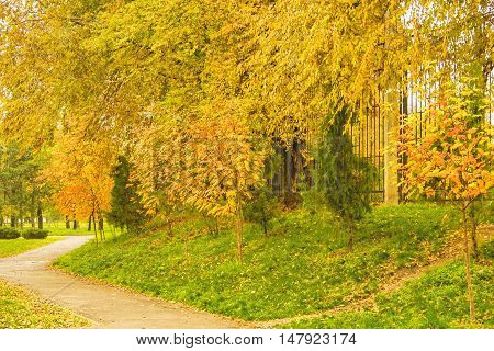 Landscape with footpath and trees with yellow and red leaves in the park