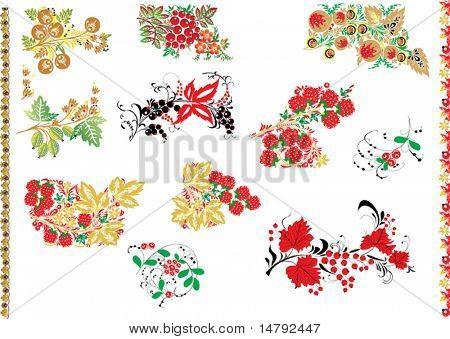 illustration with conventionalized berry design elements isolated on white background
