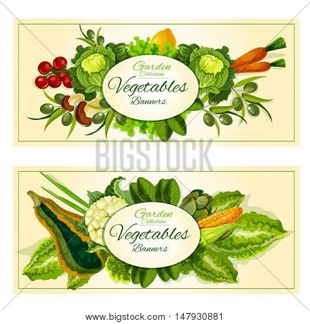 Healthy farm vegetables and fruits banners with tomato, green onion, carrot, mushroom, olive, lemon, lettuce, cabbage, corn, zucchini cauliflower artichoke and green salads