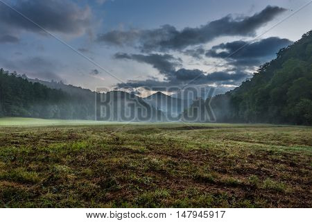 Fog Blows Through Grassy Valley in Summer in the Smoky Mountains