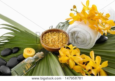 health spa and green palm