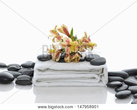 Yellow branch orchid on white towel with pile of stones