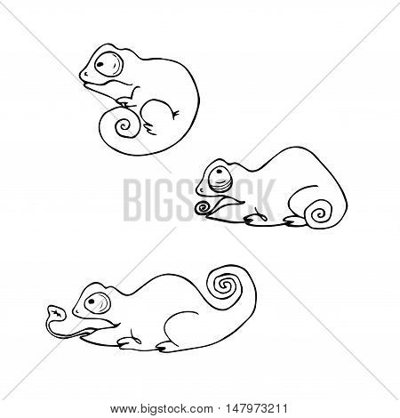 Cartoon cute chameleons set. Vector contour image.