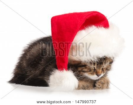 Cute kitten with red Santa Claus hat isolated on white background