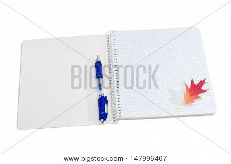 Open paper notebook with spiral binding and empty sheet of a squared paper blue ball pen and red autumn leaf of a oak on a light background