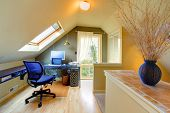 image of attic  - Attic Cozy Home Office with sky light and black vase - JPG