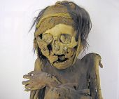 image of embalming  - Female mummy of a twenty years old inca - JPG