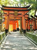 stock photo of inari  - Wooden  Torii Gates at Fushimi Inari Shrine - JPG
