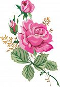 stock photo of rose flower  - illustration with pink rose flower - JPG