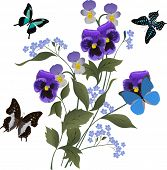 foto of floral design  - illustration with blue flowers and butterflies on white background - JPG