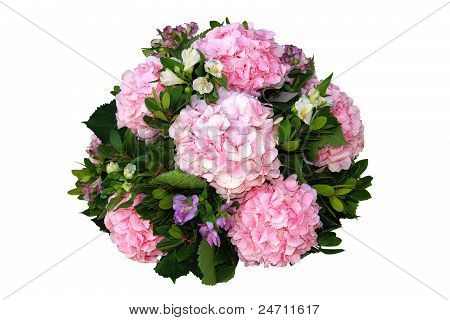 Composition Of Flowers