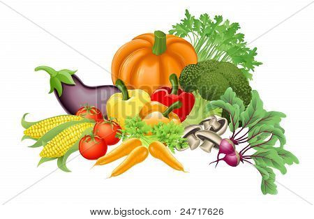 Tasty Vegetables Illustration