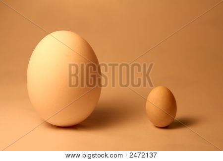 Big Egg, Little Egg