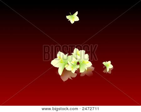 Flowers On Abstract Red Background