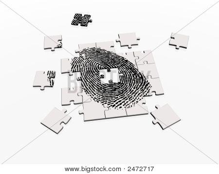 Solving Fingerprint Puzzle
