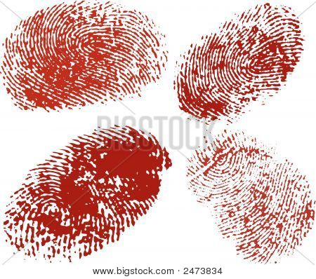 Vector Fingerprints