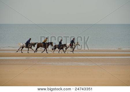 galloping horses on beach