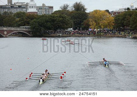 Many racers in the Head of Charles Regatta