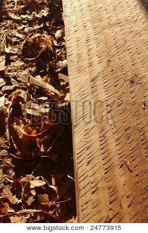 Adzed Cedar Board with Wood Shavings