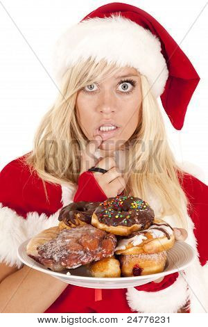 Mrs Santa Donuts Lip