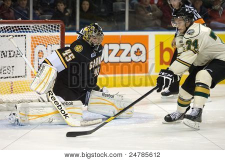 Ontario Hockey League - London Vs Sarnia
