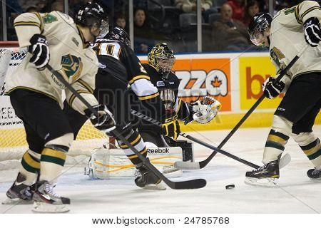 Ontario Hockey League - London Vs Sarnia