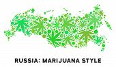 Royalty Free Cannabis Russia Map Composition Of Weed Leaves. Concept For Narcotic Addiction Campaign poster