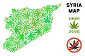 Royalty Free Cannabis Syria Map Mosaic Of Weed Leaves. Concept For Narcotic Addiction Campaign Again poster