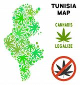 Royalty Free Marijuana Tunisia Map Composition Of Weed Leaves. Concept For Narcotic Addiction Campai poster