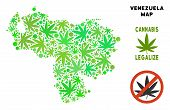 Royalty Free Cannabis Venezuela Map Collage Of Weed Leaves. Template For Narcotic Addiction Campaign poster