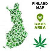 Cannabis Finland Map Composition Of Marijuana Leaves. Narcotic Distribution Template. Vector Finland poster