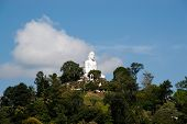 Buddha In Kandy