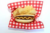 Hot Dog. Americas favorite snack food the Hot Dog. Hot Dog in Bun with Mustard. Isolated on white.  poster