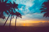 Silhouette Of Tropical Beach During Sunset Twilight. Seascape Of Summer Beach And Palm Tree At Sunse poster