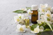 Oil Of Jasmine. Aromatherapy With Jasmine Oil. Jasmine Flowers poster